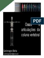 09A_EduFis_ColunaCarlomagno