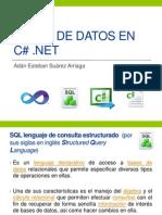 Bases de Datos en C#.Net