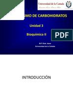 Metabolismo de Carbohidratos - Introduccion