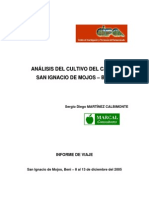 Analisis Cultivo Cacao Moxos