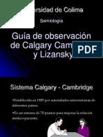 Sistema Calgary y Lizansky