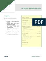 Apuntes Modelo 2