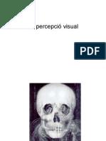 La percepció visual