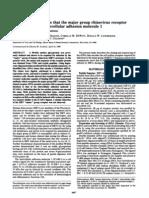 cDNA Cloning Reveals That the Major Group Rhinovirus Receptor on HeLa Cell Sis Intercellular Adhesion Molecule 1