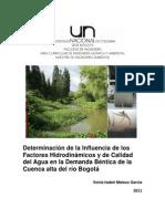 Factores Hidrodinamicos Rio Bogota