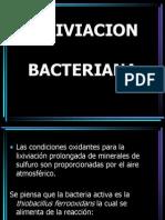Lixiviacion Bacteriana Karla