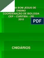 cnidÁrios_2010