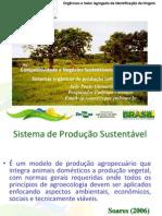 Competitividade e Negócios Sustentáveis no Cerrado