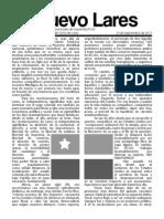 Lares-FUJI-2013.pdf