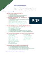 HISTORIA DE LA FILOSOFÍA LATINOAMERICANA P. Sergio Durán Enero 008