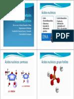 6. Macromoleculas_acidos_nucleicos