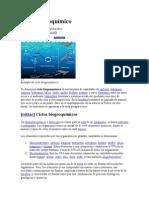 Ciclo_biogeoquimico3 (2)