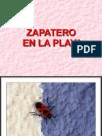 zapatero_ en_la-playa