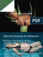 gimnasiaprenatal-110815141636-phpapp02