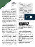 Lee el siguiente artículo y realiza las actividades propuestas.docx