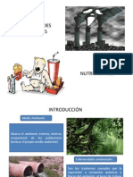patologia ambiental