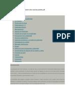 Tecnicas Estrategias Pensamiento Critico Maureen Priestley PDF