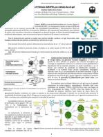 1414-L Práctica 9 Síntesis de BaTiO3 por método de sol-gel