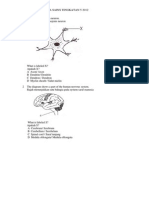 The Diagram Shows a Neuron
