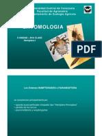 Entomologia- II Unidad. Clase Hemiptera