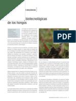 Aplicaciones Biotecnologicas de Los Hongos