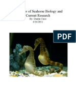 Brief Overview of Seahorse Biology and Current Research