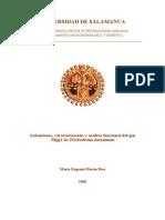DMG_Aislamiento, Caracterizacion y Analisis Funcional Del Gen Thpg1