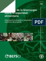 D6117d01 Seguridad Al Bionenergia