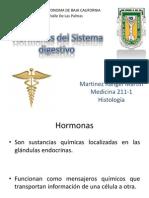 Hormonas Del Sistema Digestivo
