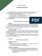 Protocol 18 Lehuzia Patologica