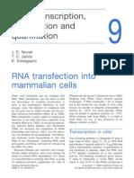 9 - RNA Transcription, Transfection and Quantitation