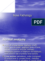 Bone Pathology Lecture