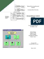 Sulfuric Acid SimulationManual