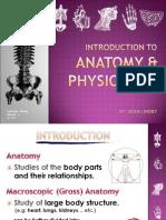 Introduction to Human Anatomy - Human Body - W1 V2003