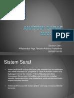Anatomi Sistem Saraf- 260110130156
