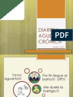 Seminario Grupo 2a (Diarrea Aguda y Cronica)