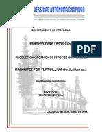 verticillium