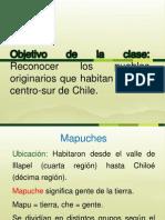 Pueblos Originarios Del Centro-sur