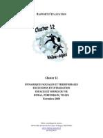 Rapport Cluster12 2007