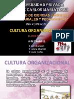 Cultura Organizacional Exp.j