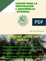 Bosques Secos Del Mundo