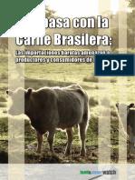 Qué pasa con la Carne Brasilera