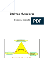 Enzimas Musculares