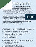 Vitaminas y Hormonas (1)