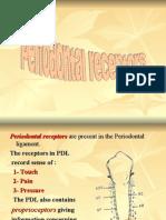Periodontal Receptors