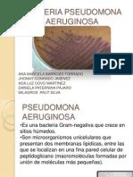 Bacteria Pseudomonas Aeruginosa Diapositiva 12