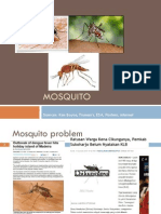 4 Mosquitoes 2013