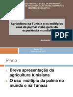Agricultura Na Tunisia e Palma