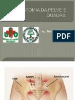 Anatomia Da Pelve e Quadril- Monitoria