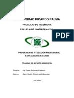 Trabajo de Impacto Ambiental TITEX 2013